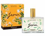Fragonard Jasmine